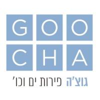 Goocha גוצ'ה דיזינגוף
